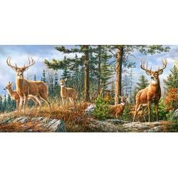 Puzzle 4000 pièces Royal Deer Family