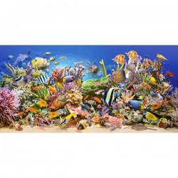 Puzzle 4000 pièces La vie sous-marine